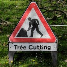 Logo of Tree Feller Fella