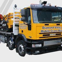 Logo of Diamond Valley Mobile Crane Hire