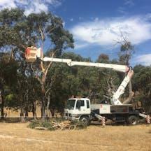 Logo of Ballarat Tree Works
