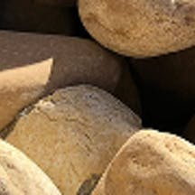 Logo of Picton Sand & Soil