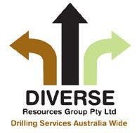 Diverse Resources Group