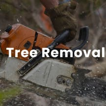 Logo of Friendly Fred's Tree Service