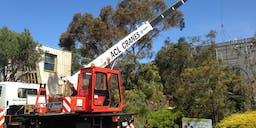 ACL Cranes Tower Crane