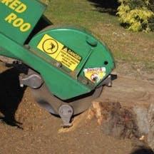 Logo of Affordable Stump Grinding