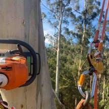 Logo of Bark Ridge Tree Services & Environmental Contracting