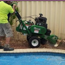 Logo of Accurate Stump Grinding