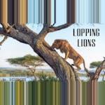 Looping Lions