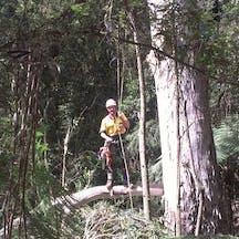 Logo of Climb Right Tree Services