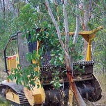 Logo of Vinton Tree Services & Plant Hire