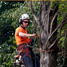 Logo of Active Tree Services