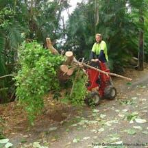 Logo of North Queensland Arboricultural Services Pty Ltd