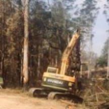 Logo of Tree Serv