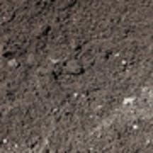 Logo of Tweed Landscape Supplies