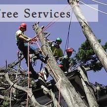 Logo of Abbott Trees