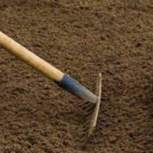 Logo of Dirt Cheap